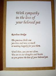 sympathy card pet handmade pet sympathy card pet loss card paw print card rainbow