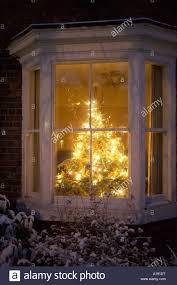 Christmas Tree Window Decor  Christmas Trees And Decor Christmas Tree In Window