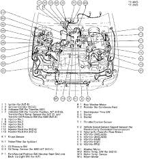 2001 4runner engine diagram 2001 wiring diagrams instruction 2001 toyota 4 runner wiring diagrams 2001 4runner engine diagram 2001 wiring diagrams instruction intended for 2005 toyota 4runner oil