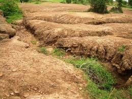 best soil erosion in images mother  as water flows over the ground it picks up loose soil and carries it away
