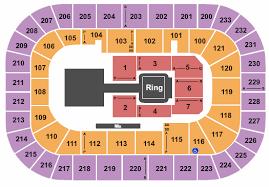 Swamp Rabbit Hockey Seating Chart Bon Secours Wellness Arena Seating Chart Greenville