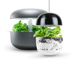 Hydroponic Kitchen Herb Garden Commercial Hydroponics Systems Small Garden Ideas