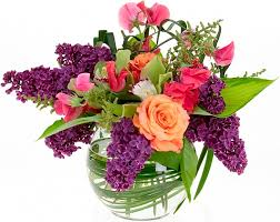 Резултат с изображение за изображение на цветя