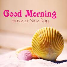 Good Morning Best Images Good Morning Whatsapp Images For DP Status Msg HD सुप्रभात 24