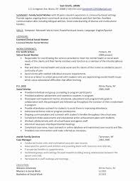 Social Worker Resume Objective New Resume Professional Summary
