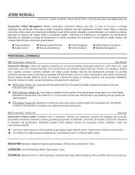 Sample Construction Resume Build Manager Resume Sample Construction