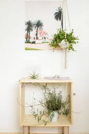 Air Plant Display Home Interiors Design Inspirations About Home Decor And Home