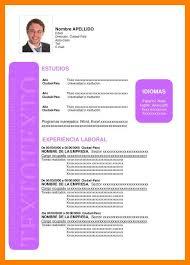 Modelo De Curriculum Vitae En Word 11 Curriculum Vitae Formato Word Todd Cerney