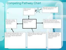 Competing Pathways Chart Functional Behavior Intervention Planning Laura A Riffel