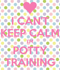 I Cant Keep Calm Im Potty Training Poster Anonymus Keep Calm O
