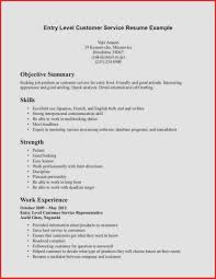 Resume Objective Examples Entry Level Customer Service Resume Examples Customer Service Fresh Entry Level Customer Service 13