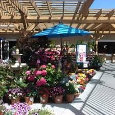 armstrong garden center locations. Delighful Locations Photo Of Armstrong Garden Centers  Del Mar CA United States Throughout Center Locations N