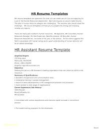 Best Resume Writers Reviews Professional Resume Template