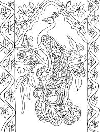 Small Picture Abstract peacock coloring pages for adults ColoringStar