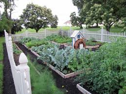 Small Picture Plain Raised Bed Vegetable Garden Design Grow Veggies In To