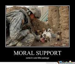 Moral Support by cosmin10 - Meme Center via Relatably.com
