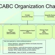 University Of Pennsylvania Organizational Chart Barbara Webers Research Works University Of Pennsylvania