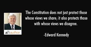 Constitution Quotes Enchanting The Constitution Does Not Just Protect Those Quote