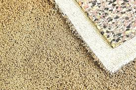 trafficmaster doormat inspirational rug gripper pad for carpet can pads ruin your doormat fresh trafficmaster lovely