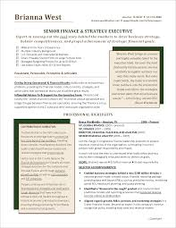 Executive Resume Finance Page 1 Narrative Sample Png Curriculum