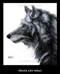 fire horse howling moon dark night sky wolf wolves your top hd  never cry wolf by madlion8 on