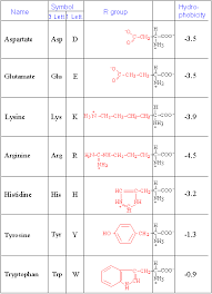 Amino Acid Chart New Untitled Document