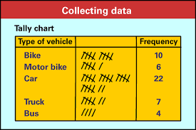 Tally Chart Definition Examples Video Lesson