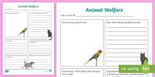 New Animal Welfare Information Poster Activity Sheet The