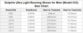 Chinese Dragon Dolphin Ultra Light Running Shoes For Men Model 035 Id D1580761