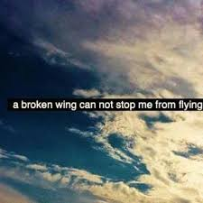 Flying Quotes Custom Quote A Broken Wing Can Not Stop Me From Flying Dont Give Up World
