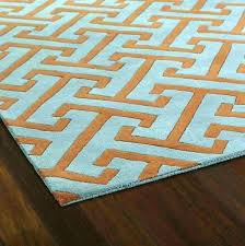 mint green rug and grey full size of white area orange pink blue ruger lcp mint green