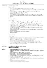 Kyc Analyst Sample Resume KYC Analyst Resume Samples Velvet Jobs 2