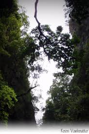 Best 25 Mountain formation ideas on Pinterest This crevice in one of the Islands of Phang Nga Thailand is typical for the