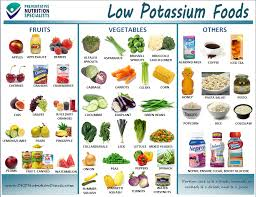 Low Potassium Foods List Chart Pins Daddy Low Potassium Fruits Lists Pictures To Pin On