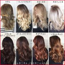 Hair Colour Level Chart 28 Albums Of Level 6 Hair Color Explore Thousands Of New
