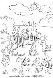 Small Picture Coloring Pages Five Little Cute Ducklings Stock Vector 394950034