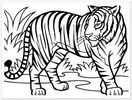 Tiger Color Page Tiger Tiger Coloring Page Daniel Tiger Coloring