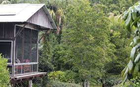 Quirky Places To Stay In New South Wales Australia Part Two Treehouse Accommodation Nsw