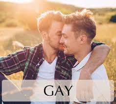 Dating for gays bisexuals