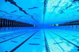 olympic swimming pool diagram. Swim Spray 30 Years Of Chlorine Testing Rh Swimswam Com Ear Anatomy Diagram  Canal Olympic Swimming Pool Diagram