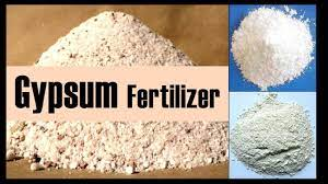 the fertilizer gypsum and its