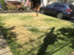 trugreen lawn fertilization service review 310074