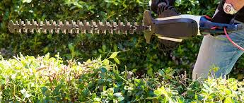 electric hedge trimmer won t start 7