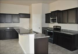 narrow kitchen base cabinet lovely 1920s kitchen cabinets home design ideas and
