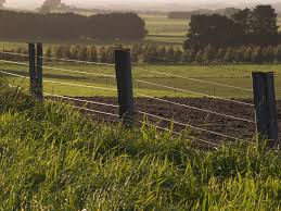 wire farm fence. This Farm Fence Has Large Wooden Posts With Rows Of Wire And Barbed On Top.