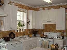 Kitchen Paint Colors Kitchen Color Ideas White Cabinets Pictures House Decor