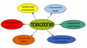 Контрольная по психологии на заказ в Минске и Витебске  disciplinarnaya organizaciya psixologii