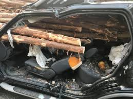 Georgia Drivers Car Impaled By Logs From Truck