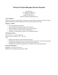 Technical Project Manager Resume Berathen Com