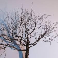 metal tree wall art unique bronze metal wall art tree sculpture home decor